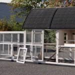 Groot en praktisch kippenhok met deuren voor optimale toegankelijkheid