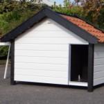 Hondenhok Turbo Wit/Zwart geïsoleerd