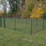 Kippenren | Afrastering | Omheining | Groen | 8x4m