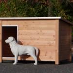 Ter illustratie een kleine labrador bij het hok (hok is niet bedoeld voor Labradors, daarvoor kunt u beter de Wolf nemen)