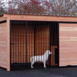 Hondenkennel FORZ zwart met geïsoleerd nachthok en Douglas houtkader 318x218 cm