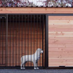 Hondenkennel van 3x2 meter