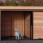 Hondenkennel 2x3 met Luxe daksysteem.