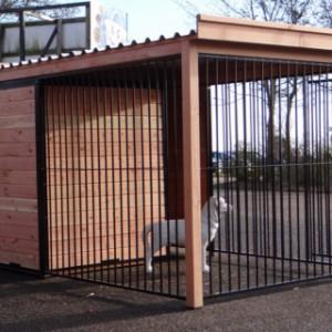 Hondenkennel met open ren, voorzien van dak