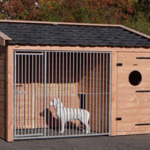 Hondenkennel Max 1 Douglas Met geïsoleerd nachthok