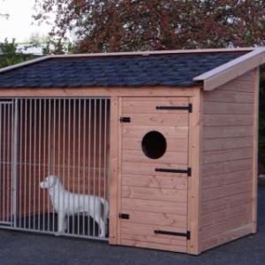 Hondenkennel Max 1 Douglas Met nachthok 341x182x240cm