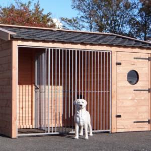 Prachtige hondenkennel met keramische dakpannen en duurzaam Douglashout