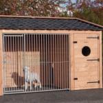 Hondenkennel Max 2 Douglas met geïsoleerd nachthok