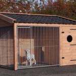 Douglas-houten kennel met geïsoleerd nachthok.