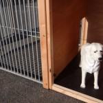 Max nachthok geïsoleerd en aan de binnenkant betimmerd met multiplex.