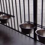 Hondenkennel met 2 sets dubbele voer- en drinkbakken