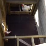 Praktische indeling van het kippen nachthok
