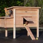 Ruim nachthok voor kippen, duurzaam en onderhoudsvrij