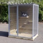 Katten klimplankjes om in een kennel te bouwen