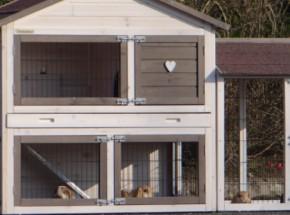 Plexiglas Isolatie Set voor konijnenhok Regular Medium met 1 ren