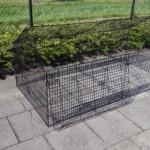 Kippenren - konijnenren Louis | zwarte draadkooi
