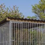 Hondenkennel FLINQ met dak Extra - vuren hout 225x220cm