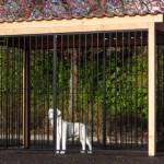 Hondenren Flinq zwart met dak en Douglas houtkader