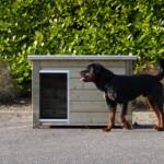 Hondenhok Ferro is bedoeld voor middelgrote honden, niet voor een Rottweiler ;)