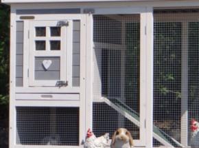 Plexiglas Isolatie Set voor konijnenhok Budget (geen konijnenhok)