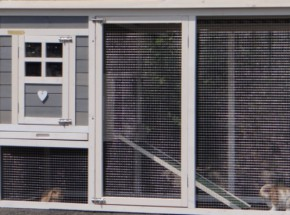 Plexiglas Isolatie Set voor konijnenhok Julia (geen konijnenhok)