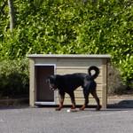 Hondenhok Wolf is zeer gebruiksvriendelijk & handig