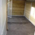 Ruime binnenplaats Hondenren Forz 2x6 meter