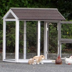aanbouwren konijnenhok | kippenhok