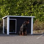Hondenhok Wolf is een stoer, houten buitenhok voor uw hond