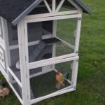 Ruime deuren konijnenhok Twin