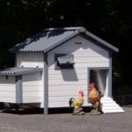 Groot konijnenhok Lotte, ook geschikt als nachthok voor kippen