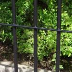 Kennelpaneel zwart met deur 150x183 cm