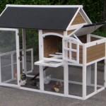 kippenhok space met aanbouwren