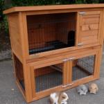 Goedkoop en compleet konijnenhok Basic