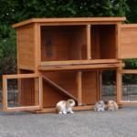 Goedkoop konijnenhok Basic met heel veel deuren