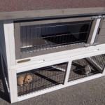Goedkoop konijnenhok, geschikt voor buiten: de Marianne anti-knaag