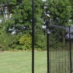 Hekpaal zwart 170/125cm lang