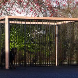 Hondenkennel is een mooie hondenren voor onze prachtige Rottweiler 'Ferro'