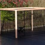 Hondenren met zwarte spijlenpanelen met houten omlijsting voor een nette en degelijke uitstraling.
