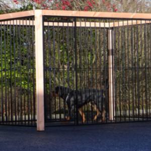 Hondenkennel met Lariks hout frame op kunststof voetjes, kennelpanelen (spijl) zwart gepoedercoat.