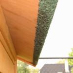 Dakleer dak konijnenhok Prestige Large Dubbel