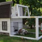Goedkoop konijnenhok Pretty Home heeft zelfs een scharnierdak