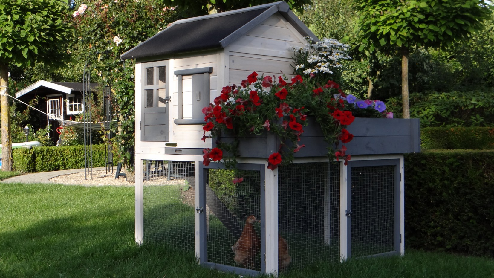 kippenhok sunshine met bloembak. Black Bedroom Furniture Sets. Home Design Ideas