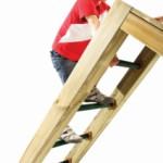 Monkey Bar ladder