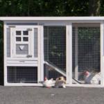 Goedkoop konijnenhok Budget met ruime uitloopren
