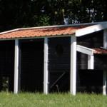 Kippenhok Supreme Zwart/Wit is gemaakt van geïmpregneerd hout in onze eigen werkplaats, afm. 380x130x195cm.