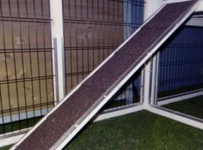 Loopplank voor konijnenhok - kippenhok | 75x16cm