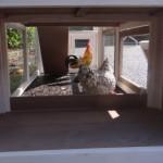 Onderren kippenhok