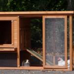 Goedkoop konijnenhok Budget met kunststof dak en veel openingen