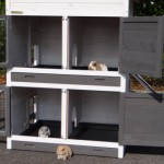 konijnenhok Double Medium White: een groot konijnenhok met 2 nachthokken